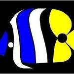 Pig Faced Butterfly Fish From Great Barrier Reef, Asbjorn Lonvig
