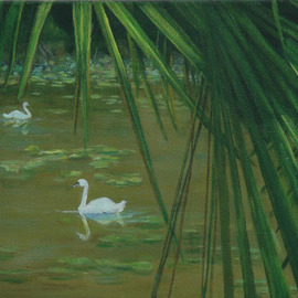 Swans Through the Palms By Lorrie Williamson