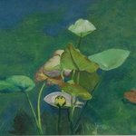 The Bonnet Lily, Lorrie Williamson
