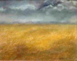 Lorrie Williamson: 'The Lone Prairie', 2003 Oil Pastel, Landscape.   The expanse of the Everglades with afternoon storms approaching painted with Oil Pastels. Best in Show award.Size with mat and frame: 16 x 12. White mat and light wood box frame. ...