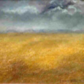 The Lone Prairie By Lorrie Williamson