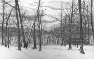 Landscape Charcoal Drawing by Lacey Smith Title: Charcoal Woods, created in 2011