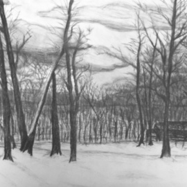 Lacey Smith Artwork Charcoal Woods, 2011 Charcoal Drawing, Landscape
