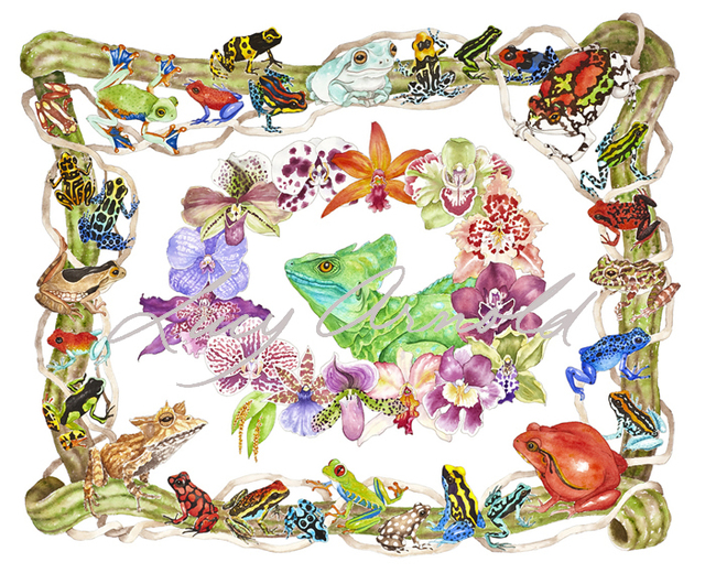 Lucy Arnold  'Basilisk, Orchids, Frogs', created in 2010, Original Watercolor.