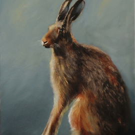 Hare resting