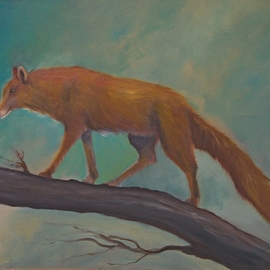 Red Fox  By Tom Lund-Lack