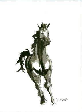 Tom Lund-lack: 'Running Horse No 3', 2012 Ink Painting, Equine.  One of a series of ten studies exploring the movement of horses.  The freedom that is sometimes expressed in the study reflects the loose brush and pen strokes used to create the piece. All these studies are in Indian ink on paper and are signed and dated.  They are all...