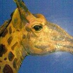 Giraff On Blue By Abdullah Butler