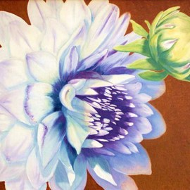 Lora Vannoord: 'Dahlias', 2011 Oil Painting, Floral. Artist Description:  Original oil painting on canvas of a White Dahlia and a Dahlia bud that grew in my Michigan garden. This is a large and beautiful white flower. frame included ...