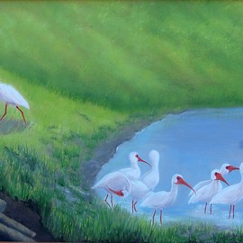 Lora Vannoord: 'Ibis Birds', 2016 Oil Painting, Landscape. Artist Description: Original oil painting of Ibis birds at a pond in Florida. I love to watch them run around in a group looking for food. Includes custom wooden frame ...