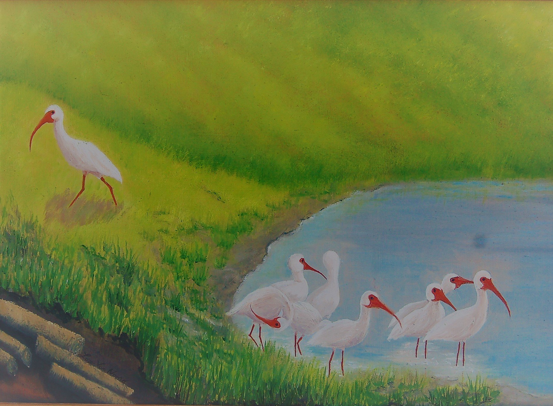 Lora Vannoord: 'Ibis Birds', 2016 Oil Painting, Landscape. Original oil painting of Ibis birds at a pond in Florida.  I love to watch them run around in a group looking for food.  Includes custom wooden frame ...