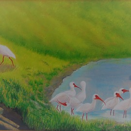 Ibis Birds  By Lora Vannoord