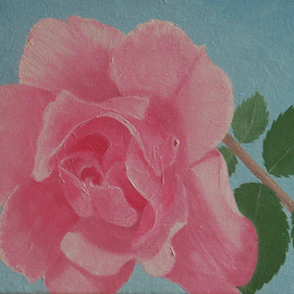 Lora Vannoord: 'The Pink Rose', 2016 Oil Painting, Floral. Artist Description:  Original oil painting of a pink rose on canvas. It is a wrapped canvas so there is no frame necessary. ...