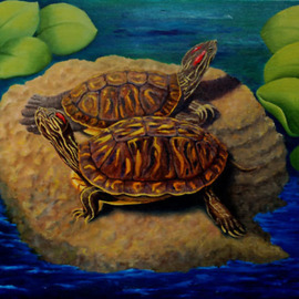 Lora Vannoord: 'Turtles', 2011 Oil Painting, Sea Life. Artist Description:  Original oil painting on canvas board of two turtles I saw in a pond at an Ormond Beach Garden in Florida. Includes a lovely 3 inch wooden frame that has a 1 inch off white inset. ...