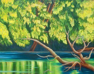 Lora Vannoord: 'Yellow leaves', 2015 Oil Painting, nature.  Original oil painting on canvas of trees by a stream with a old log in the water.  The yellow leaves are reflected in the water.  This is a scene at a park in Grand Rapids Michigan near the Grand River.  The frame is a 1 12 inch dark brown wooden...