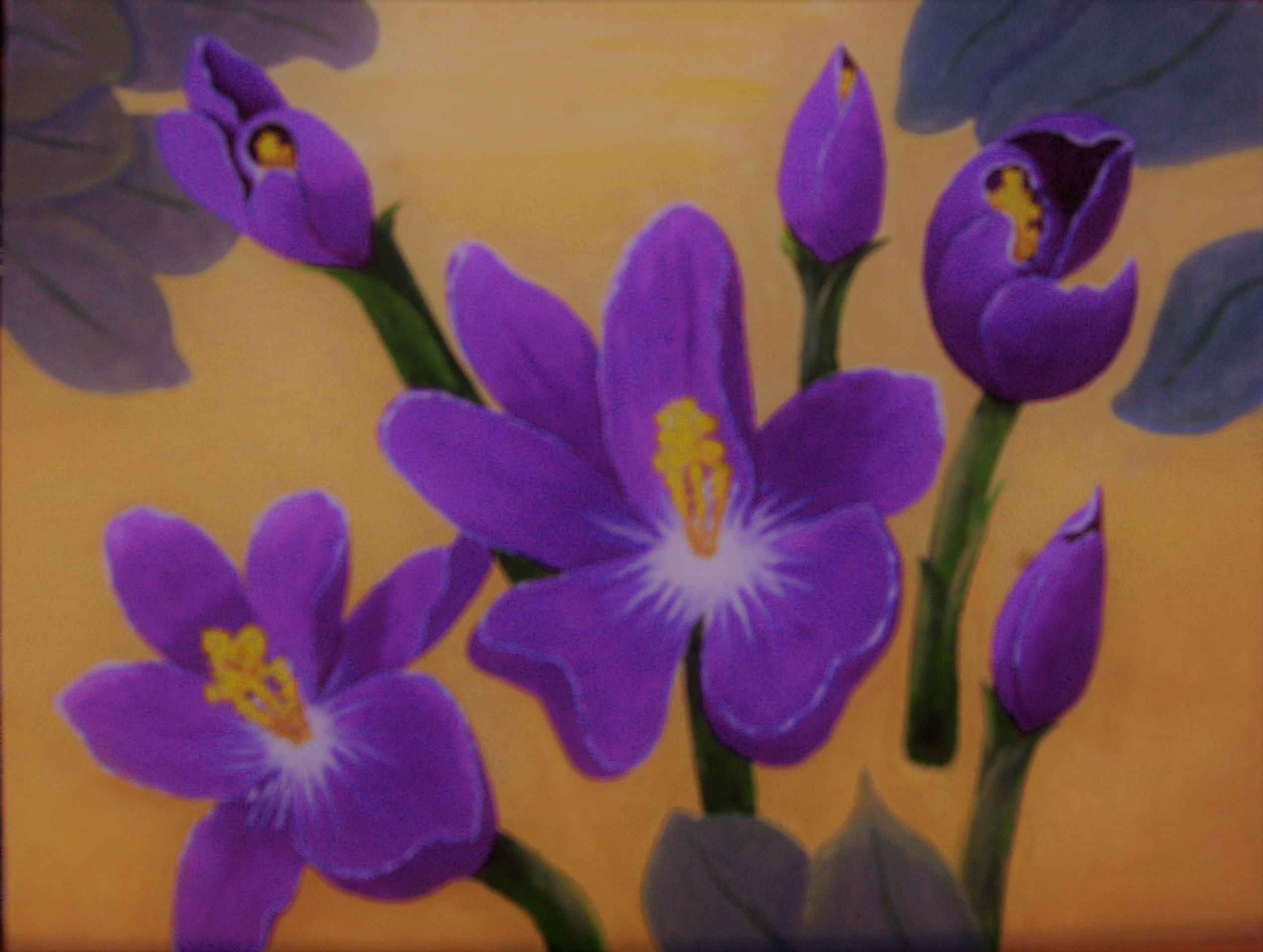 Lora Vannoord: 'crocus flowers', 2019 Oil Painting, Floral. Original oil painting of purple crocus flowers with a very light yellow ochra background that is close to yellow but mellow.  Real wood frame included. ...