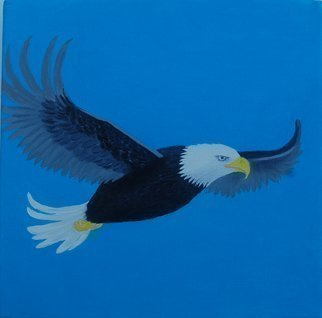 Lora Vannoord: 'eagle', 2017 Oil Painting, Birds. Original oil painting of a soaring eagle in the dark blue sky on a wrapped canvas that needs no frame.  I have it wired to hang. ...