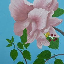 Lora Vannoord: 'pink double hibiscus', 2020 Oil Painting, Floral. Artist Description: Original Oil Painting of a flower from my garden in Florida.  It is a double Hibiscus and my favorite flower.  Includes a one inch wooden frame and ready to hang...