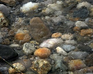 Color Photograph by Lynda Lehmann titled: At Rest Within the Streaming Tide, created in 2009