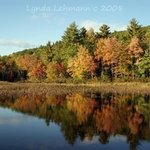 Autumn Enchantment By Lynda Lehmann