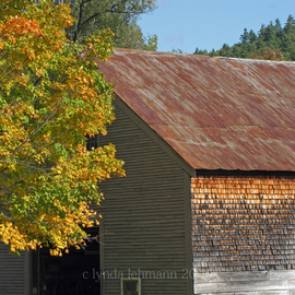 Lynda Lehmann: 'Barnside', 2009 Color Photograph, World Culture. Artist Description:  Vintage Americana: an old and weathered barn in Maine. Print 8 x 10 matted to 11 x 14 inches, in acid free mat. Please feel free to ask about other size and price options.  ...