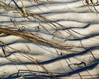 Color Photograph by Lynda Lehmann titled: Beach Tapestry, 2010