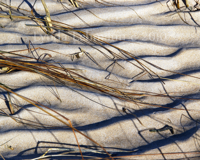 Lynda Lehmann  'Beach Tapestry', created in 2010, Original Photography Mixed Media.
