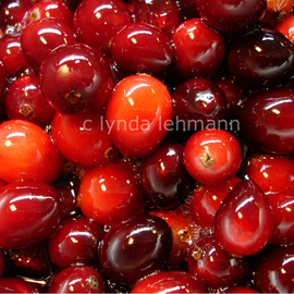 Lynda Lehmann: 'Berry Red', 2007 Color Photograph, Food. Artist Description:  Bright red cranberries, bubbling and simmering in a pot. Image c Lynda Lehmann.Archival print 8 x 10 matted to 11 x 14 inches, ready for framing. ...