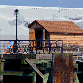 Lynda Lehmann: 'Boat Dock', 2010 Other Photography, World Culture. Artist Description:  A little local color and a few parked bicycles at a Maine wharf. Your 8 x 10 matted print ( to 11 x 14, acid- free) will be signed on the mat, not on the print. Keywords: coastal, scenic, culture, bicycles, wharf, local color, Maine, transportation, dock, harbor, nostalgic, ...