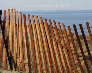 Color Photograph by Lynda Lehmann titled: Curve of the Sand Fence, 2010