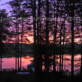 Lynda Lehmann: 'Dawn', 2011 Color Photograph, Landscape. Artist Description:  Scenic view of trees at the edge of the forest, silhouetted against a gorgeous crimson sunrise on a pristine Maine lake. dawn, sunrise, glow, island, lake, water, Maine, autumn, seasonal, trees, woods, recreation, nature, beauty, peace, serenity, solitude, twilight, texture, boating, color, sunlight,  environment, landscape, background, scenic, light, ...