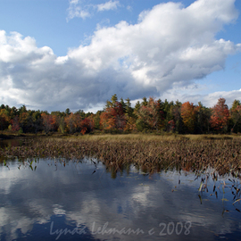 Lynda Lehmann: 'Enigma of Beauty', 2008 Color Photograph, Ecological. Artist Description:  A panoramic view of the brilliant foliage around a Maine lake in early autumn, with fluffy fair- weather clouds and aquatic plants reflected in the water. When I see a scene like this, I' m astounded at the beauty of our Earth, especially in those places we could ...