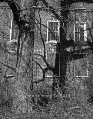 Lynda Lehmann: 'Entities', 2010 Black and White Photograph, Abstract.  Intimations of The Unseen seem to lurk in the dark, gestural shadows of this huge tree outside an abandoned institution. Your 8 x 10 archival print will be matted to 11 x 14 and signed on the mat only.  Please feel free to ask about other sizes. Keywords: building, architecture...