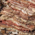Layered Rock in Tonto Forest By Lynda Lehmann