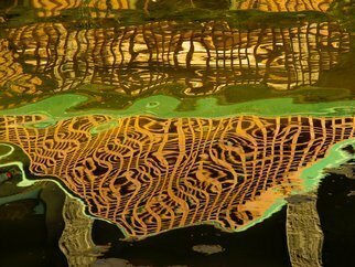 Lynda Lehmann: 'Reflections Baroque', 2014 Color Photograph, Abstract.    Reflections of railings in a pond make a great pattern and undulating abstract, that reminds me of music and melody.  Notice the lily pad and fallen leaves in the water, adding a subtle counterpoint.   reflections, water, waving, curves, organic, yellow, gold, green, abstract, abstracted realism, nature, pattern, undulating, light and...
