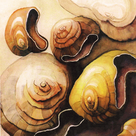 Lynda Lehmann: 'Revolving Shells', 1996 Other Painting, Abstract. Artist Description: I did this watercolor some years ago. I held one tiny shell, about an inch across, in my hand, and visualized it turning in space. Image c Lynda Lehmann. ...