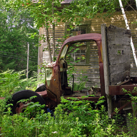 Lynda Lehmann: 'Sequestered', 2008 Color Photograph, World Culture. Artist Description:  An abandoned, old work truck, now derelict and overgrown with weeds.  Taken in Maine. Image c Lynda Lehmann. ...