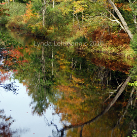 Lynda Lehmann: 'Twice the River', 2010 Color Photograph, Landscape. Artist Description:  Reflections of trees and fall foliage in the serene water of a New Hampshire River.  Keywords: alone, arbor, autumn, beauty, branches, camping, color, fall, flow, foliage, forest, harmony, hiking, inspiration, inspiring, isolated, joy, lonely, nature,