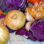 Veggie Colors By Lynda Lehmann