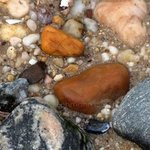 Wet Rocks At Waters Edge, Lynda Lehmann