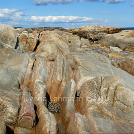 Lynda Lehmann: 'Wild Rugged Shoreline', 2010 Color Photograph, Landscape. Artist Description:  A beautiful view of the rugged, scenic coast of Maine, defined by  huge, fractured boulders rimming the shoreline. Keywords: beach, beauty, coast, shore, scenic, nature, outdoors, rugged, marine, clouds, sky, ocean, sea, Maine, outdoors, geology, terrainMatted to 11 x 14, in an acid- free mat.  Please feel ...
