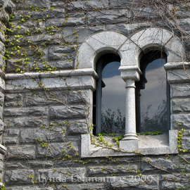 Windows At The Castle, Lynda Lehmann