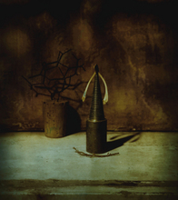 - artwork Taxonomy_of_Memory-1278952837.jpg - 2009, Photography Polaroid, Still Life