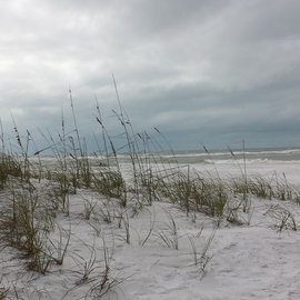Sea oats and Surfs Up By Jerry Schole