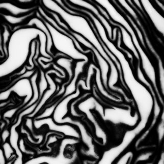 Jaromir Hron Artwork The maze, 2010 Black and White Photograph, Abstract