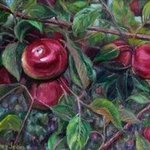 apple orchard view By Mary Jean Mailloux