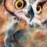 Give A Hoot, Michele Feinberg