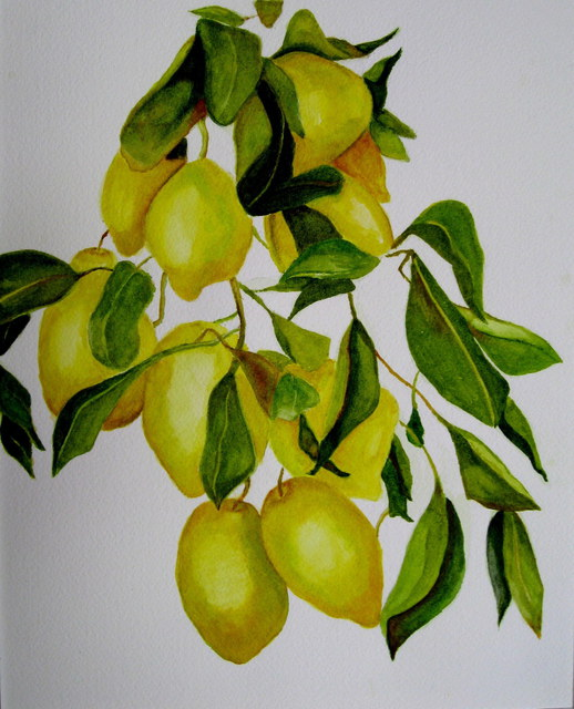 Margaret Lyons  'Lemon Tree', created in 2009, Original Watercolor.