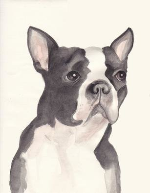Carolyn Alston Thomas: 'Adult Boston Terrier', 2013 Giclee, Animals.  This is  a watercolor I did for my niece upon special request. ...