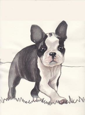 Carolyn Alston Thomas: 'Boston Terrier pup 1', 2013 Giclee - Open Edition, Animals.   This is  a watercolor I did for my niece upon special request.  ...